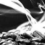 beans-smoke-sh2